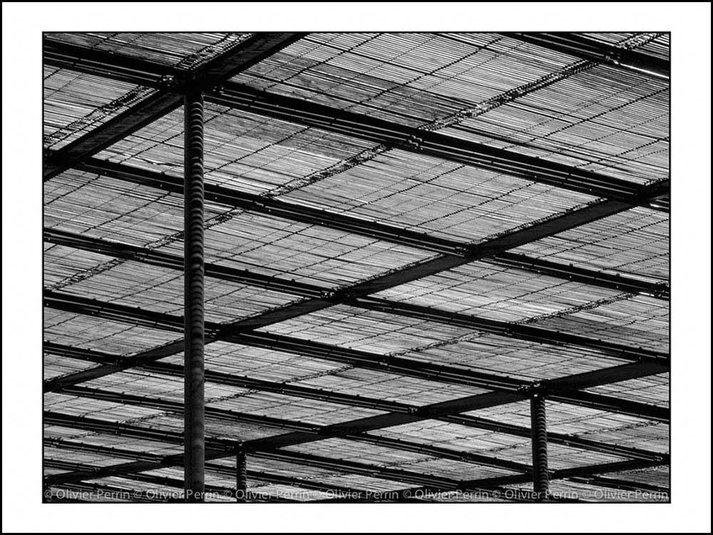 Lx012 Lisbonne. Portugal parc eduardo 7