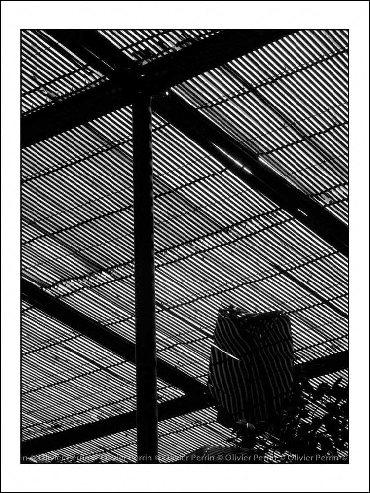 Lx013 Lisbonne. Portugal parc eduardo 7