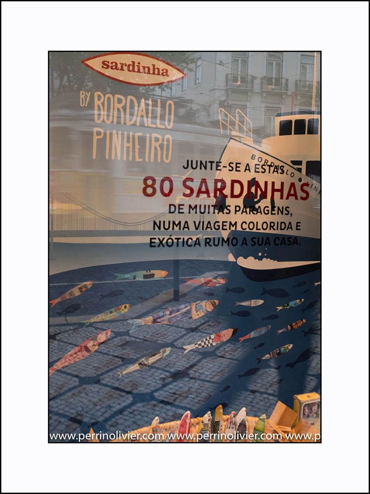 Reflets Bordallo Pinheiro. Vista Alegre. Chiado. Lisbonne. Portugal.